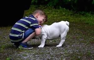 4/15 - Bambino con cane